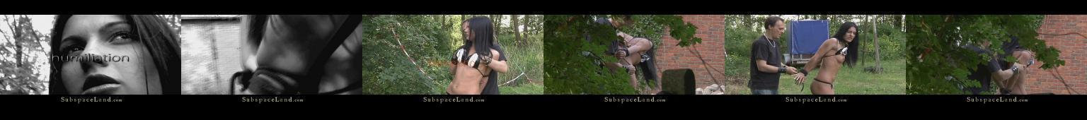 Młoda brunetka wywieziona do lasu, związana i gwałcona
