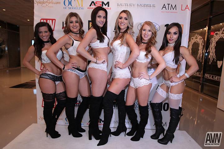 Gala porno AVN 2017