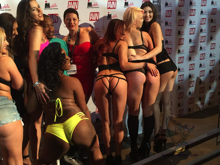 Gala AVN Awards 2016